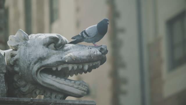 Sculptures in Piazza della Signoria of Florence video