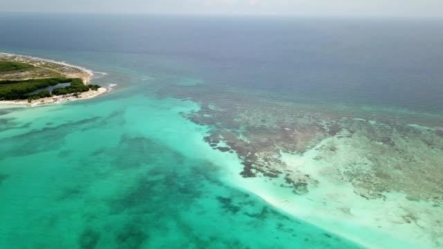 sea beach coast Bonaire island Caribbean sea aerial drone top view 4K UHD video Aerial view DJI pro drone top view 4K UHD video leeward dutch antilles stock videos & royalty-free footage