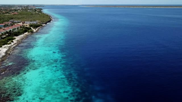 sea beach coast Bonaire island Caribbean sea video Aerial view DJI pro drone top view 4K UHD video leeward dutch antilles stock videos & royalty-free footage