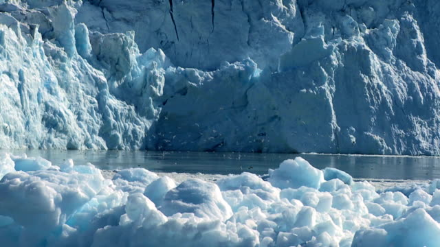 Sea Birds Near Ice Cliffs Sea birds near spectacular ice cliffs formed by an ice glacier in the arctic icecap stock videos & royalty-free footage
