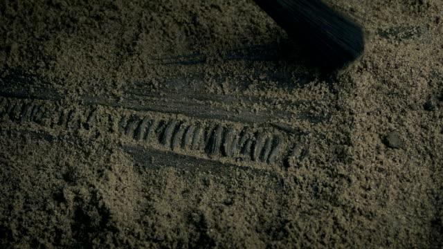 sea creature fossil mouth som grävs - utdöd bildbanksvideor och videomaterial från bakom kulisserna