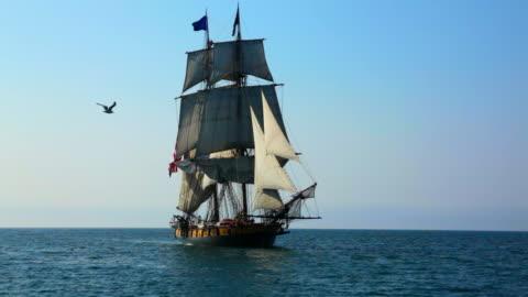 vidéos et rushes de seagull passe en face du grand voilier - navire