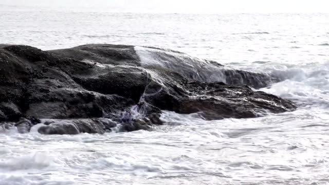 sea ocean water coast summer video
