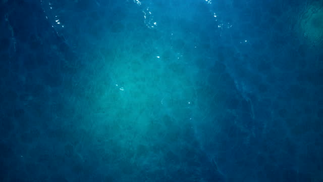 vídeos de stock e filmes b-roll de sea or ocean, waves close-up view. blue waves sea water. blue crystal clear water. one can see the sandy seabed. sea waves top view. 3d 4k animation - água parada