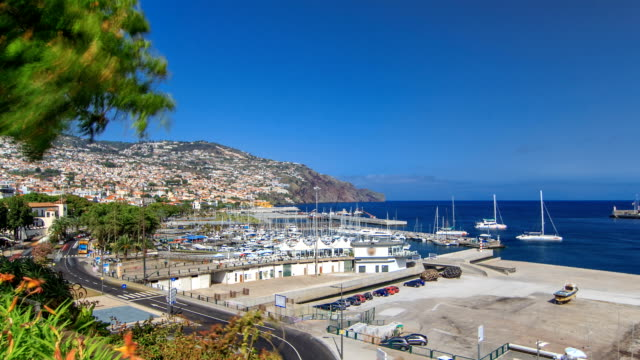 Sea port Funchal, Madeira island, Portugal timelapse Sea port with yacht, ship in atlantic ocean view from park of Funchal, Madeira island, Portugal timelapse funchal stock videos & royalty-free footage