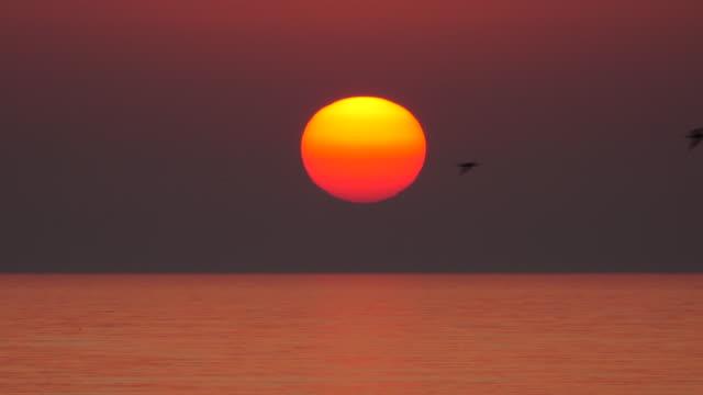vídeos de stock e filmes b-roll de sea sunset - linha do horizonte sobre água