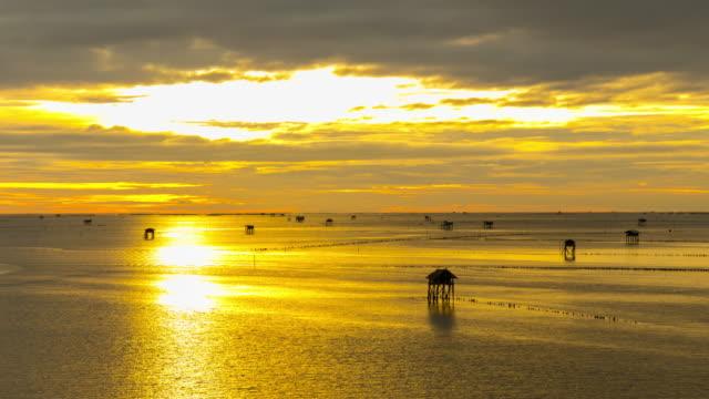 Sea Sunsut video