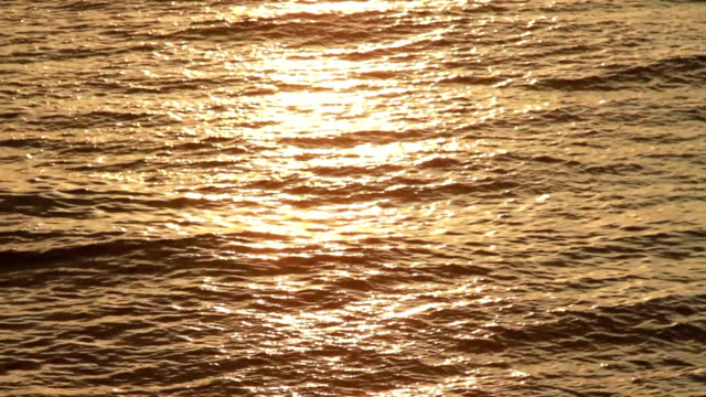 Sea surface at sunset video