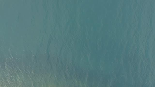 vídeos y material grabado en eventos de stock de textura al mar  - superficie del agua