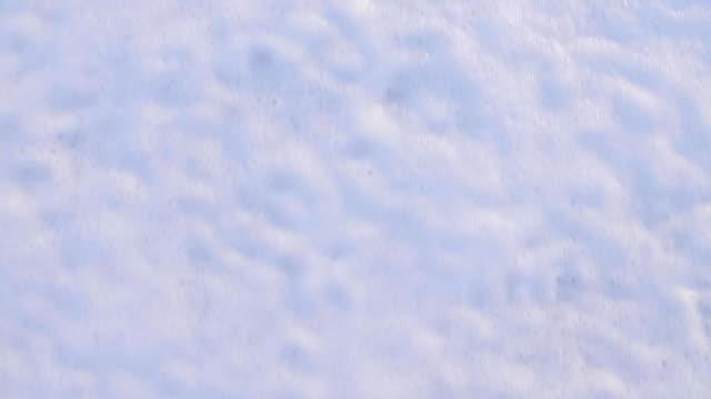 sea wave and foam top view - gommapiuma video stock e b–roll