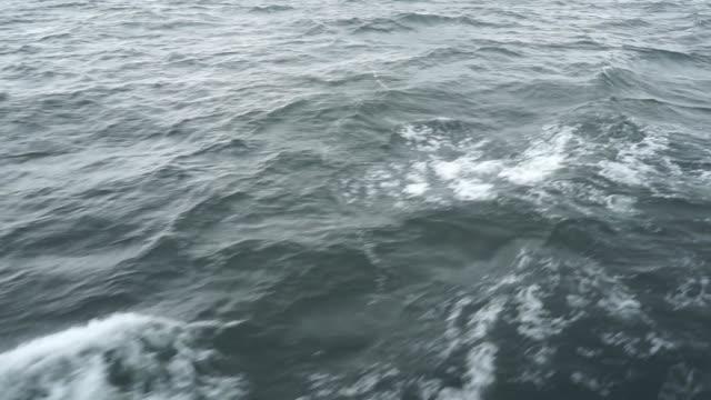 Sea wave on swell sea close-up. video