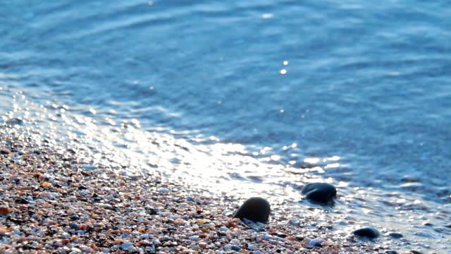 Sea waves breaking on the rocks video