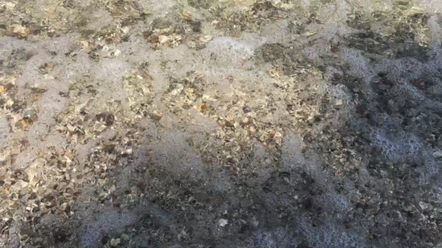 Sea Waves Rolling up small Gravel