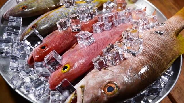 シーフードの背景キッチンテーブルの材料。魚とアイスキューブ。クローズアップ。回転する円形バンド - 未加工点の映像素材/bロール