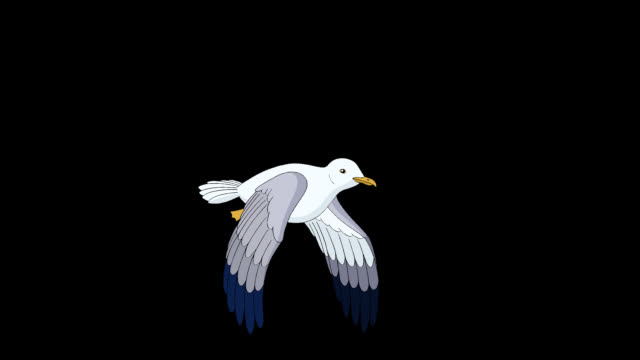 Seagull flies and soars in the sky alpha mate