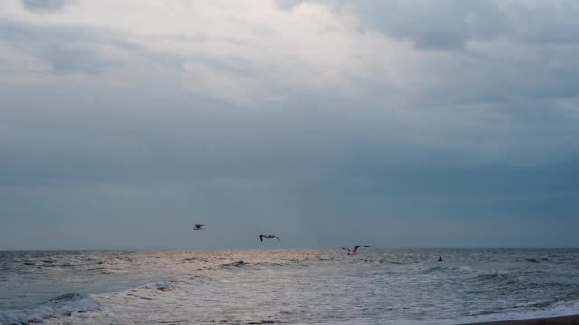 A seagull in the sky amid thunderstorm clouds over the sea. Slow motion. video