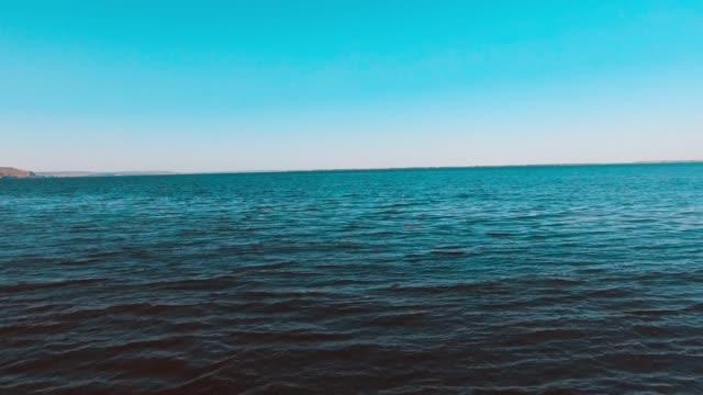 カモメが水面から離陸 - マルチコプター点の映像素材/bロール