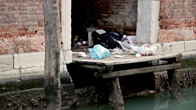 vídeos y material grabado en eventos de stock de gaviotas y pigeons comer de basura en venecia - amarrado