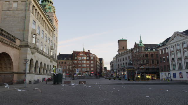 Seagulls In Empty Streets Of Nytorv During Lockdown Wide Slow Motion Tracking Shot Of Seagulls Taking Off From Empty Streets Of Nytorv, Copenhagen, Denmark denmark stock videos & royalty-free footage