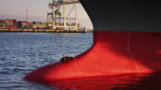 Seal Basking on Bulbous Bow of Cargo Ship in Port video