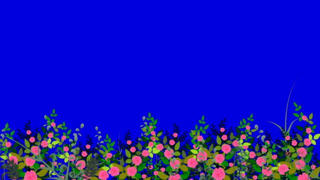 vídeos de stock, filmes e b-roll de jardim de flores perfeito movendo-se ao vento em uma tela azul em loop - primavera estação do ano