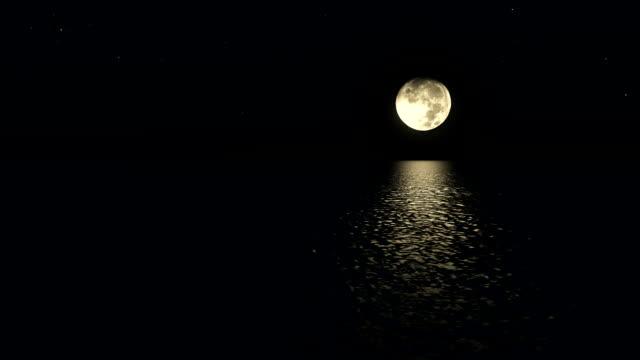 海抜の低い愚か者の月でシームレスなループ月光パス ビデオ