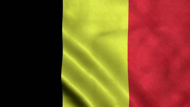 bandiera 4k senza soluzione di continuità del belgio - belgio video stock e b–roll