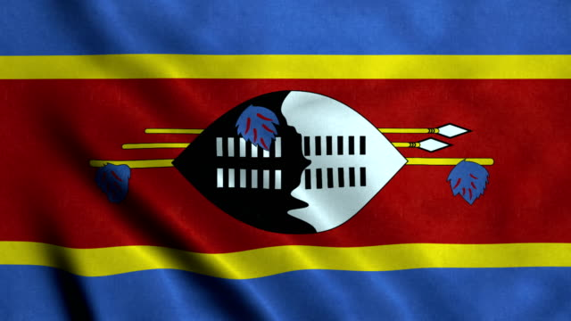 4K Seamless Loopable Flag of Swaziland video