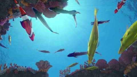 Seamless looping animation of colorful fish on a vibrant coral reef Seamless loop of colorful fish swimming around a vibrant coral reef with sun rays in the back - high quality 3d animation 4k stock videos & royalty-free footage