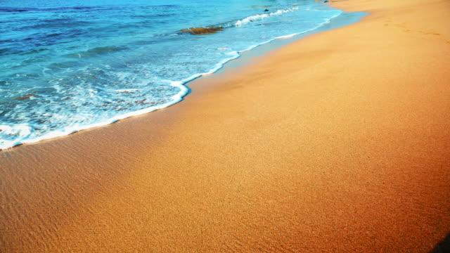 Naadloze Looping achtergrond, voeten lopen over zand, voetafdrukken video