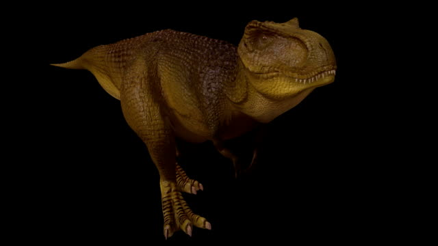 seamless t-rex 3d animation - dinosaur stock videos and b-roll footage