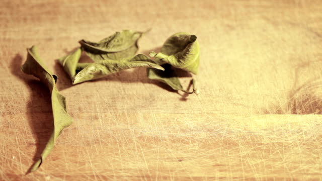 sear mandarin leafs on a wooden table - abbrustolito video stock e b–roll