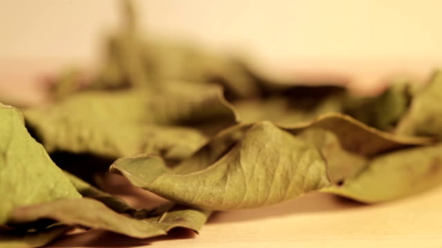 sear mandarin leafs on a wooden table sear mandarin leafs on a wooden table with blurred motion close-up daylight savings stock videos & royalty-free footage