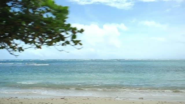vídeos de stock, filmes e b-roll de vista do mar na ilha de oahu - férias na praia