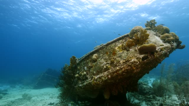 カリブ海難破船のサンゴ、スポンジの様々 なダイビング サイト タグボート サバのキュラソー島周辺のサンゴ礁の海の絵 - 広角撮影点の映像素材/bロール
