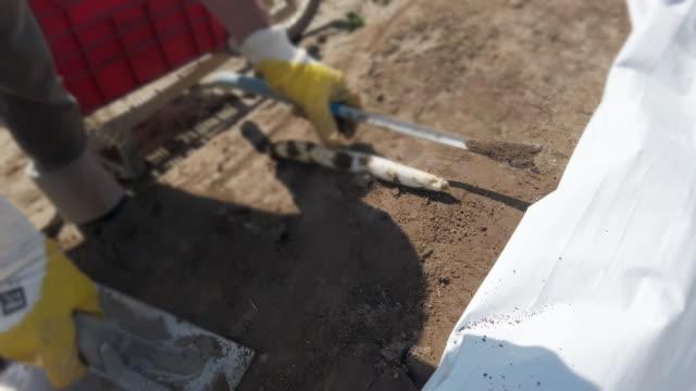 saisonarbeiter erntet spargel - aerial view soil germany stock-videos und b-roll-filmmaterial