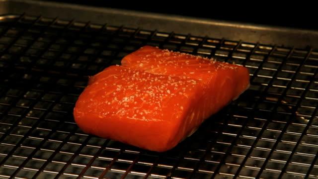 seasoning salmon fish fillet seafood video