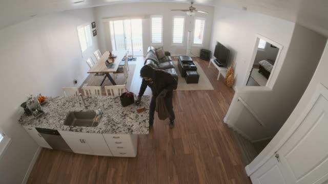 Security Camera Home Burglary in Progress