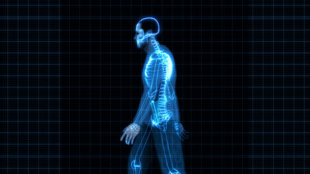 Security X-Ray Scan - Man with Gun (HD) video