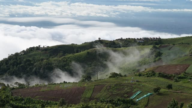 See the fog, mountains, sky, Phu Thap Berk, Thailand