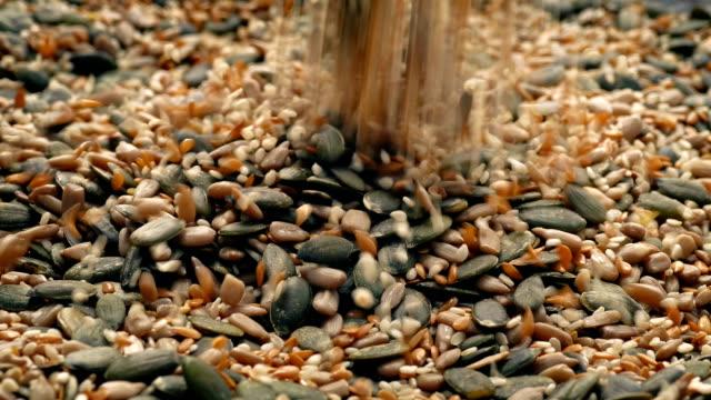 seeds pour into pile - sesamo video stock e b–roll