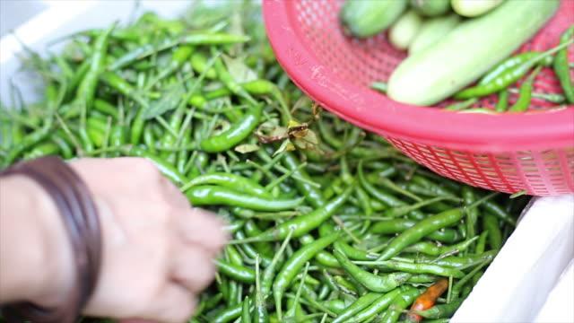 vídeos de stock, filmes e b-roll de selecionar pimenta verde - comida salgada