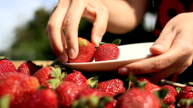 Selecting strawberries video