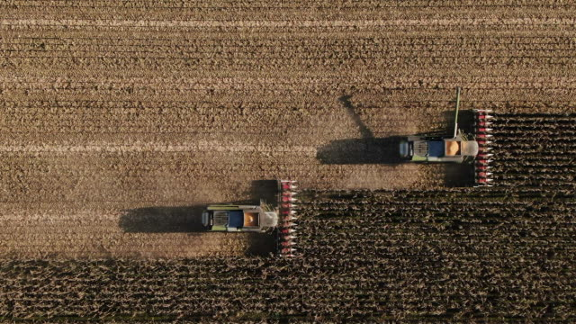vídeos de stock e filmes b-roll de self driving autopilot technologies. two electric combine, harvester removes oats, view from height - trator