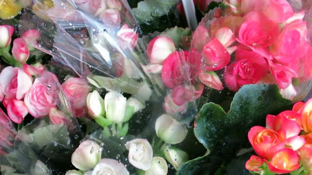 販売の花 - 花市場点の映像素材/bロール
