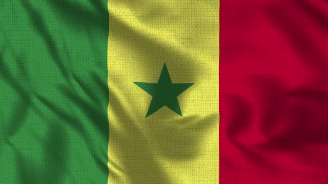 Senegal Flag - Realistic 4K - 30 fps flag of the Sao Senegal waving in the wind. Senegal Flag - Realistic 4K - 30 fps flag of the Sao Senegal waving in the wind. Seamless loop with highly detailed fabric texture. Loop ready in 4k resolution senegal stock videos & royalty-free footage