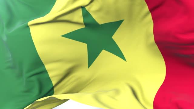 senegal flag waving at wind in slow with blue sky, loop - dakar video stock e b–roll