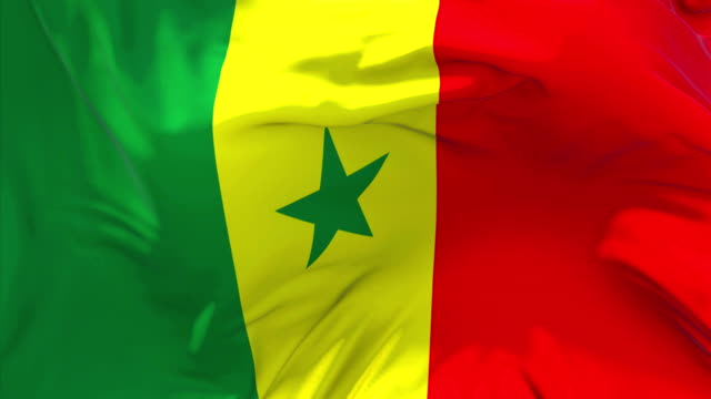 senegal flag waving in wind slow motion animation . 4k realistic fabric texture flag smooth blowing on a windy day continuous seamless loop background. - dakar video stock e b–roll