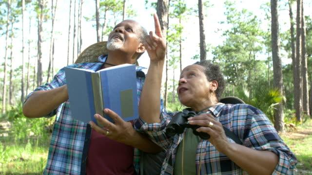シニアアフリカ系アメリカ人カップルバードウォッチング - バードウォッチング点の映像素材/bロール