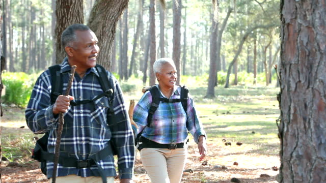 Senior African-American couple hiking in the woods video